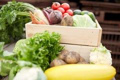Chiuda su delle verdure sull'azienda agricola Immagine Stock