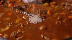 Chiuda su di aggiunta del pepe nel curry del manzo del giapponese archivi video
