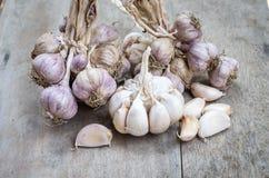 Chiuda su di aglio porpora Immagini Stock