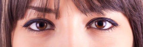 Chiuda su di bei occhi caucasici della donna Immagine Stock