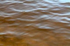 Chiuda su di belle superfici dell'acqua dei laghi ed il Mar Baltico fotografia stock