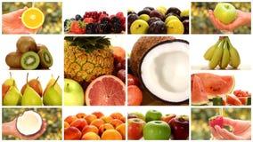 Chiuda su di diversi frutti, montaggio stock footage