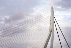 Chiuda su di Erasmus Bridge a Rotterdam fotografia stock libera da diritti