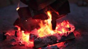 Chiuda su di fuoco di accampamento bruciante alla notte video d archivio