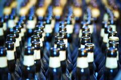 Chiuda su di molte bottiglie della birra fotografie stock