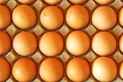Chiuda su di molte uova in una fila, vista di piano Fotografia Stock