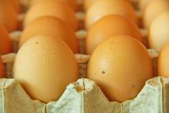 Chiuda su di molte uova in una fila, vista di prospettiva, Immagini Stock