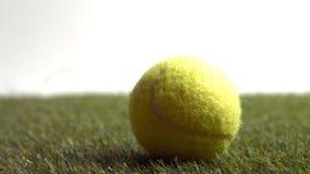 Chiuda su di pallina da tennis video d archivio