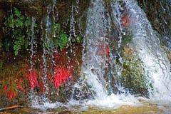 Chiuda in su di piccola cascata variopinta in Spagna Fotografie Stock