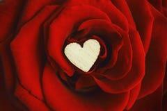 Chiuda su di piccolo cuore di legno fra i petali di una rosa rossa M. Fotografie Stock Libere da Diritti