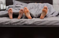 Chiuda su di quattro piedi sotto la coperta grigia Fotografia Stock Libera da Diritti