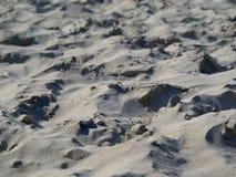 Chiuda su di terra sabbiosa irregolare sembrante naturale sulla spiaggia fotografie stock libere da diritti