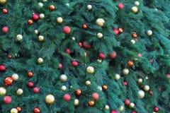 Chiuda su di un albero di Natale meravigliosamente decorato Immagini Stock
