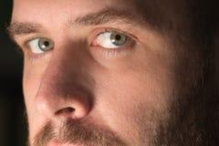 Chiuda su di un fronte del maschio adulto Fotografie Stock Libere da Diritti