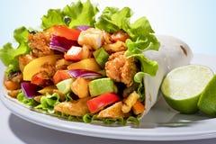 Chiuda su di un kebab con il pollo Fotografia Stock