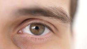 Chiuda su di un occhio maschio Dettagli dell'apertura dell'occhio marrone di un uomo che esamina la macchina fotografica Moviment stock footage