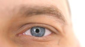 Chiuda su di un occhio maschio Dettaglio di un occhio azzurro di un uomo che esamina macchina fotografica immagini stock libere da diritti