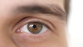 Chiuda su di un occhio maschio Dettaglio di un occhio marrone di un uomo che esamina macchina fotografica Movimento lento 3840x21 stock footage