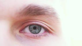 Chiuda su di un occhio maschio grigio Dettaglio di un occhio grigio di un uomo che esamina macchina fotografica Movimento lento archivi video