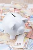 Chiuda su di un porcellino bianco sulle banconote Immagini Stock Libere da Diritti