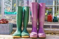 Chiuda su di una coppia Wellington Boots porpora e verde immagine stock libera da diritti