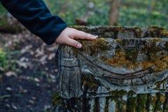 Chiuda su di una mano del ` s dell'uomo sulla pietra tombale in vecchio cimitero fotografie stock libere da diritti