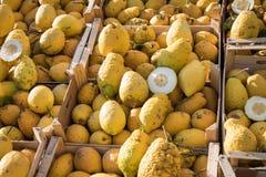 Chiuda su di una scatola di legno in pieno di grande cedro giallo alla frutta m. fotografia stock libera da diritti