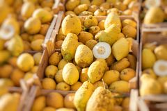 Chiuda su di una scatola di legno in pieno di grande cedro giallo alla frutta m. fotografie stock