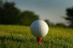 Chiuda in su di una sfera di golf su un T fotografia stock