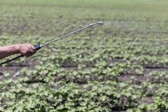 Chiuda su di uno spruzzatore del raccolto, fertilizzante di spruzzatura dell'ugello sul raccolto Fotografie Stock