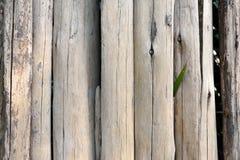 Chiuda su di vecchio recinto del ceppo Fotografia Stock Libera da Diritti