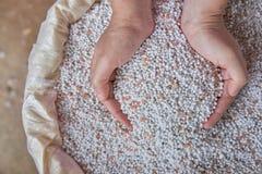 Chiuda su fertilizzante chimico in sacchi Fotografie Stock