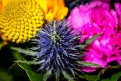 Chiuda su fotografia su un fiore in un bouqet Fotografie Stock Libere da Diritti