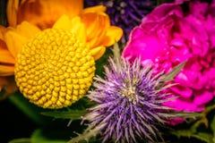 Chiuda su fotografia su un fiore in un mazzo Immagine Stock Libera da Diritti