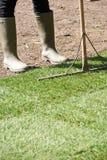 Chiuda su prato inglese di Laying Turf For del giardiniere di paesaggio di nuovo fotografia stock
