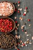 Chiuda su sale e su peperoni himalayani rosa in cucchiai immagine stock