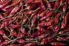 Chiuda su struttura dei peperoncini rossi messicani rossi e piccanti Immagine Stock Libera da Diritti
