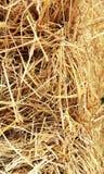Chiuda su struttura del pagliaio del fieno, fondo dell'agricoltura Immagine Stock