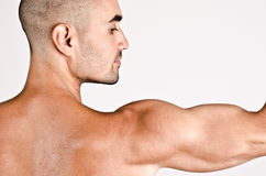 Chiuda su sul profilo di un uomo e del braccio con la spalla ed il bicipite immagini stock
