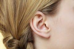 Chiuda su sull'orecchio e sui capelli femminili della treccia immagini stock