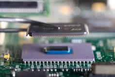 Chiuda su sulle pinzette che tengono il chip sul circuito del computer Immagine Stock