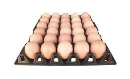 Chiuda su trenta uova crude in vecchio vassoio di plastica nero isolato su fondo bianco con il percorso di ritaglio immagini stock libere da diritti