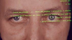 Chiuda sugli occhi grigi del fronte dell'uomo Codice di battitura a macchina del pirata informatico Tipo verde sullo schermo Soft stock footage