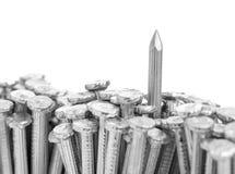 Chiuda sui chiodi del calcestruzzo d'acciaio Fotografie Stock