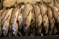 Chiuda sui pesci del mercato di prodotti freschi Fotografia Stock Libera da Diritti