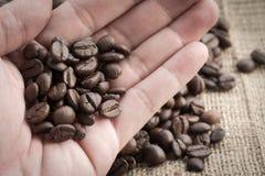 Chiuda sul chicco di caffè a disposizione fotografia stock