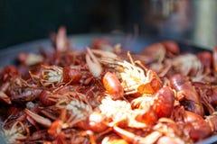 Chiuda sul dettaglio dei gamberi d'acqua dolce rossi cucinati fotografie stock