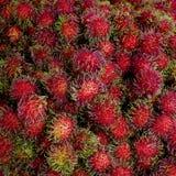 Chiuda sul fondo delizioso dolce della frutta del rambutan Fotografia Stock