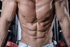 Chiuda sul forte tipo dell'ABS che mostra nei muscoli della palestra fotografie stock libere da diritti