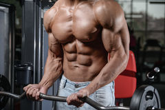 Chiuda sul forte tipo dell'ABS che mostra nei muscoli della palestra fotografia stock libera da diritti